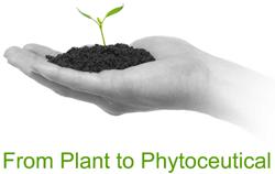 Phytotreat