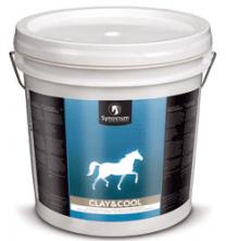 Synovium Clay & Cool